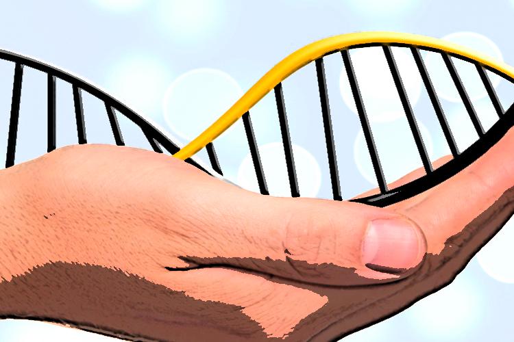 Genomika - zaprojektuj swój życiorys