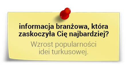 Prof. Andrzej Blikle ociekawostkach zbranży: idea turkusowa