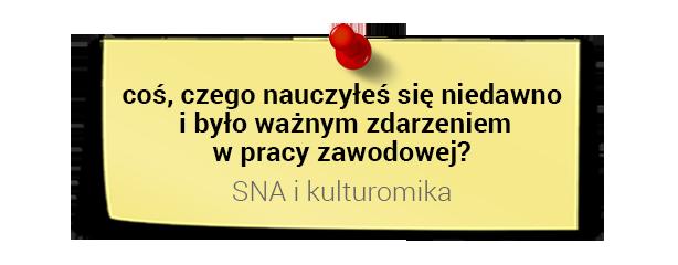 Prof. Dariusz Jemielniak onauce: SNA ikulturomika