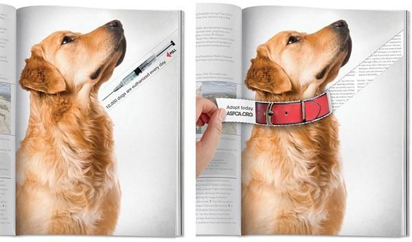 ASPCA - psy wreklamie