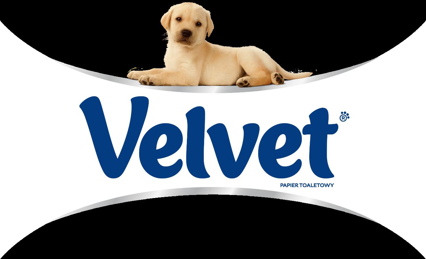 Marka Velvet - psiaki wreklamie