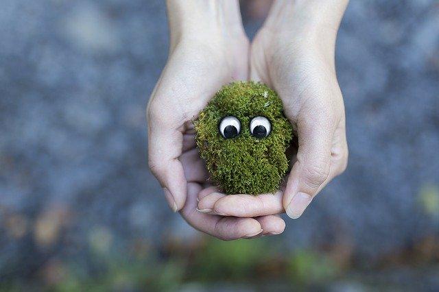 bardzo duże znaczenie mają produkty przyjazne środowisku