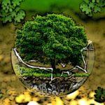 ekomarketing eko-marketing